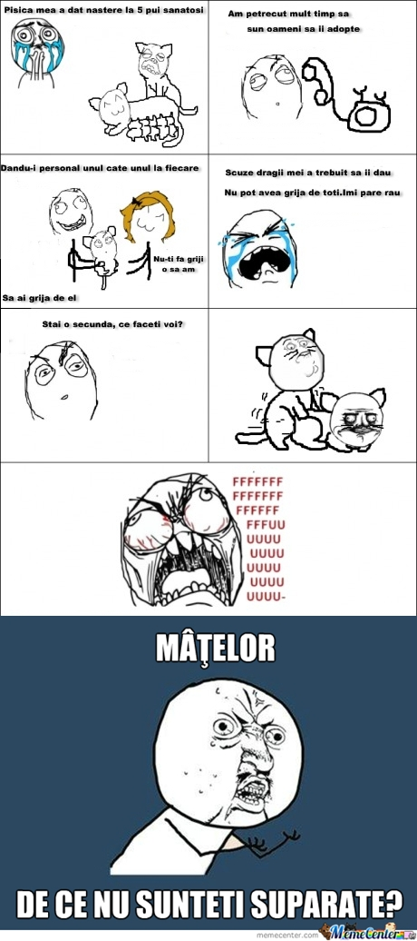 MATELEE-vert